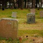 Cintorín Skogskyrkogården