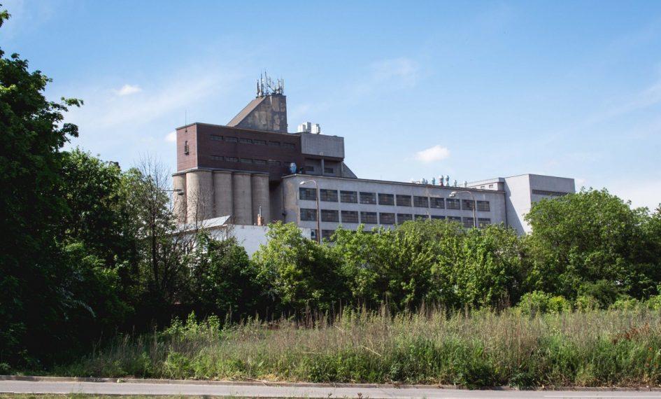 trnavský mlyn emil belluš